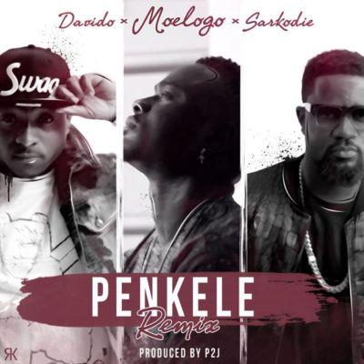 moelogo-penkele-remix-ft-davido-sarkodie