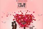 DJ Big N Ft Reekado Banks – I'm In Love