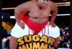 Teni – Sugar Mummy
