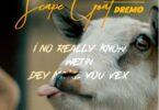 Dremo - Scape Goat (Davolee Diss)