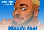 Broda Shaggi - Wonda Fool