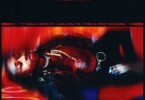 Ty Dolla Sign - Spicy (Remix) Ft. Tyga, YG & J Balvin