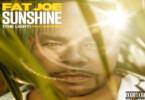 Fat Joe - Sunshine (The Light) Ft. Amorphous