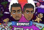 Diamond Platnumz - Gimmie Ft. Rema